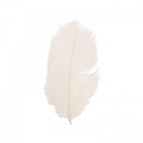 Pluma de avestruz blanca