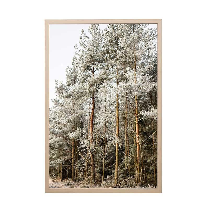 Cuadro Trees