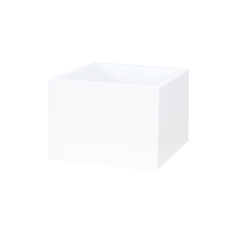 Caja Globe, abeto blanco